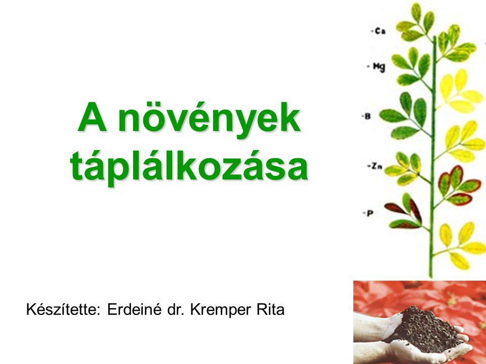A növények táplálkozása Készítette: Erdeiné dr. Kremper Rita
