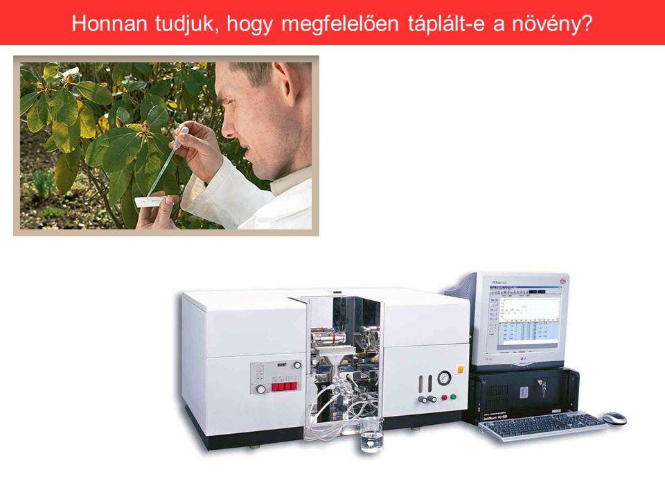 Honnan tudjuk, hogy megfelelően táplált-e a növény?