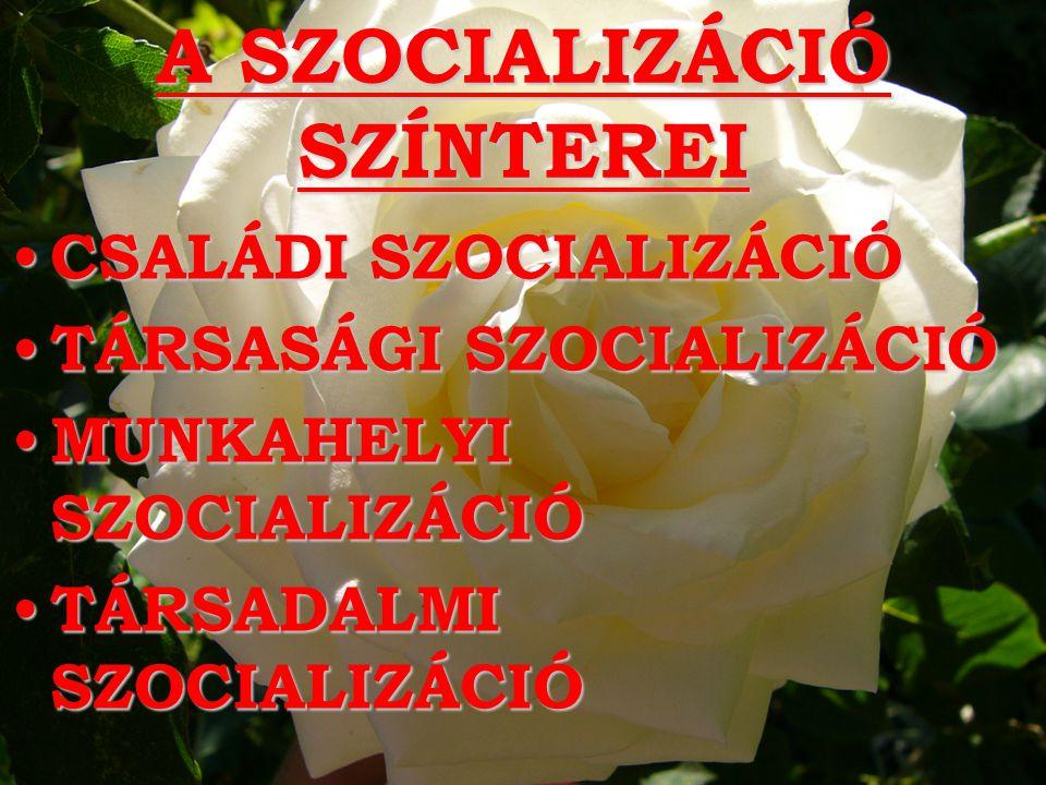 A SZOCIALIZÁCIÓ SZÍNTEREI CSALÁDI SZOCIALIZÁCIÓ CSALÁDI SZOCIALIZÁCIÓ TÁRSASÁGI SZOCIALIZÁCIÓ TÁRSASÁGI SZOCIALIZÁCIÓ MUNKAHELYI SZOCIALIZÁCIÓ MUNKAHELYI SZOCIALIZÁCIÓ TÁRSADALMI SZOCIALIZÁCIÓ TÁRSADALMI SZOCIALIZÁCIÓ