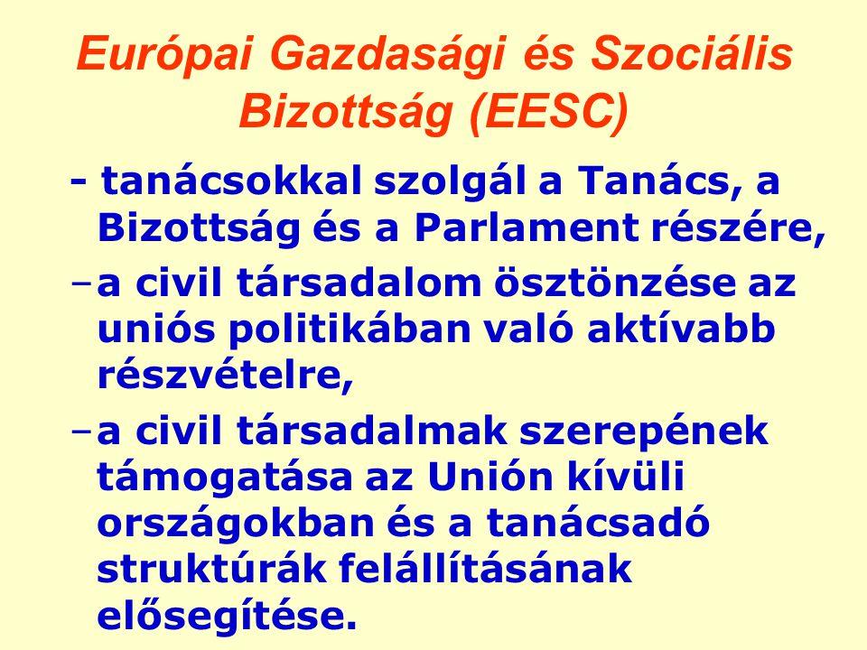 Európai Gazdasági és Szociális Bizottság (EESC) - tanácsokkal szolgál a Tanács, a Bizottság és a Parlament részére, –a civil társadalom ösztönzése az uniós politikában való aktívabb részvételre, –a civil társadalmak szerepének támogatása az Unión kívüli országokban és a tanácsadó struktúrák felállításának elősegítése.