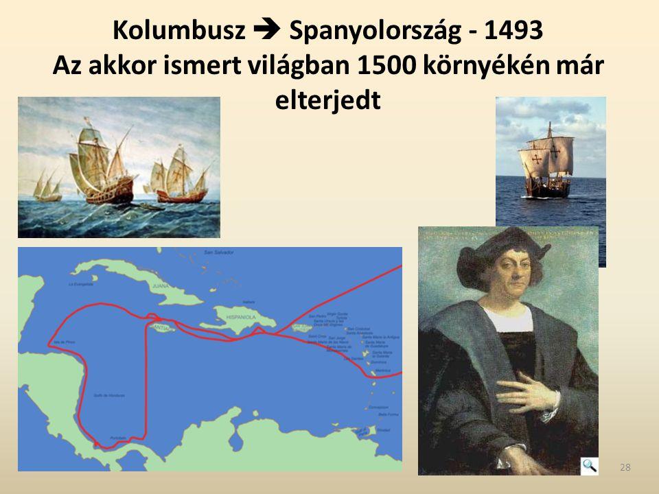 Kolumbusz  Spanyolország - 1493 Az akkor ismert világban 1500 környékén már elterjedt 28