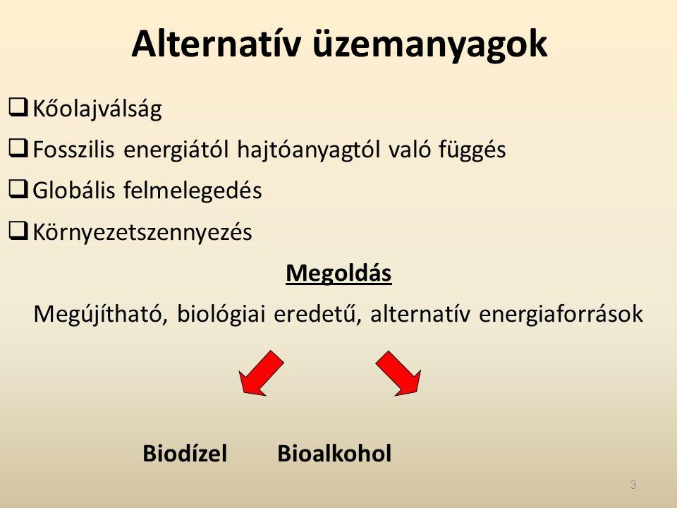 Bioetanol előállításra alkalmas növények termésátlaga és bioetanol hozama Növény Termésátlag (t / ha) Átlagos bioetanol hozam (l / ha) Cukorrépa404000 Cukorcirok353500 Cukornád575300 Burgonya202000 Őszi búza51500 Kukorica62300 Csicsóka504200 54