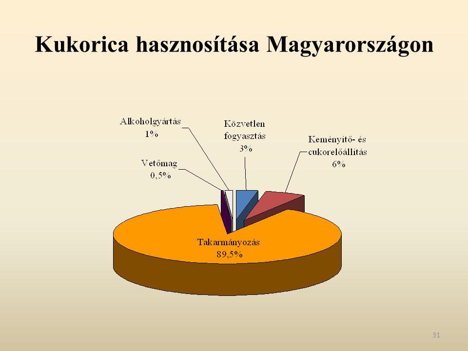 Kukorica hasznosítása Magyarországon 31