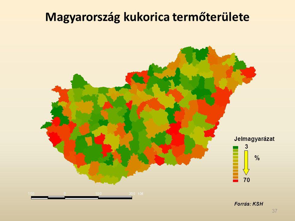 Magyarország kukorica termőterülete 3 70 Jelmagyarázat % Forrás: KSH 37