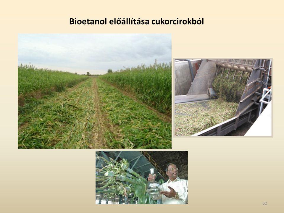 Bioetanol előállítása cukorcirokból 60