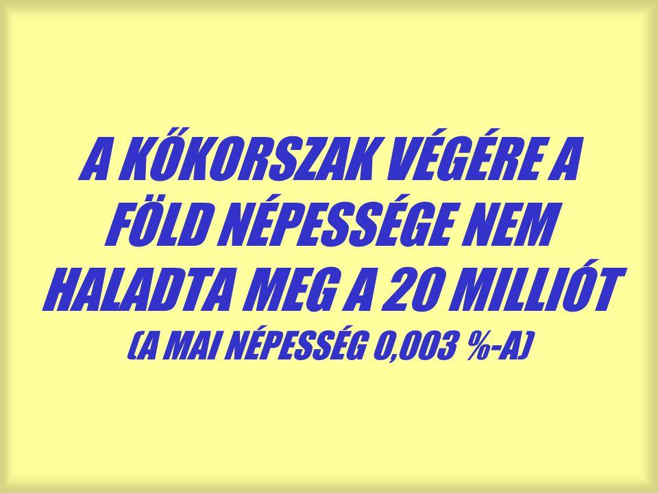 A KŐKORSZAK VÉGÉRE A FÖLD NÉPESSÉGE NEM HALADTA MEG A 20 MILLIÓT (A MAI NÉPESSÉG 0,003 %-A)