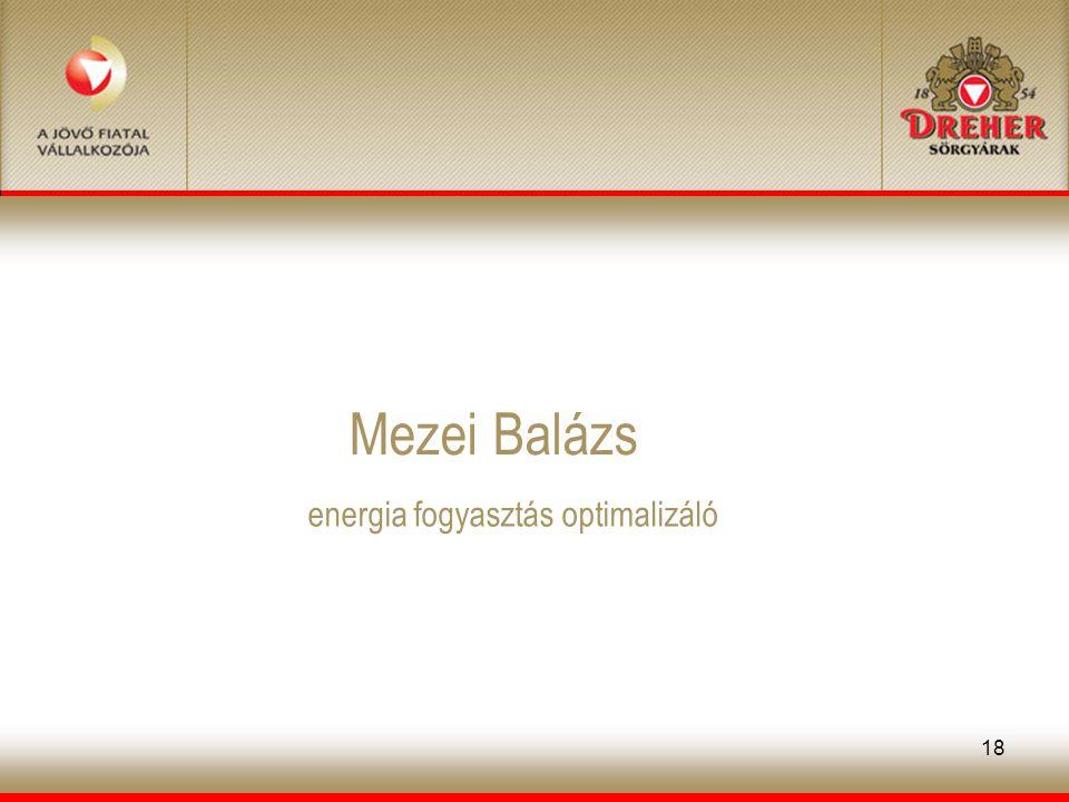 18 Mezei Balázs energia fogyasztás optimalizáló