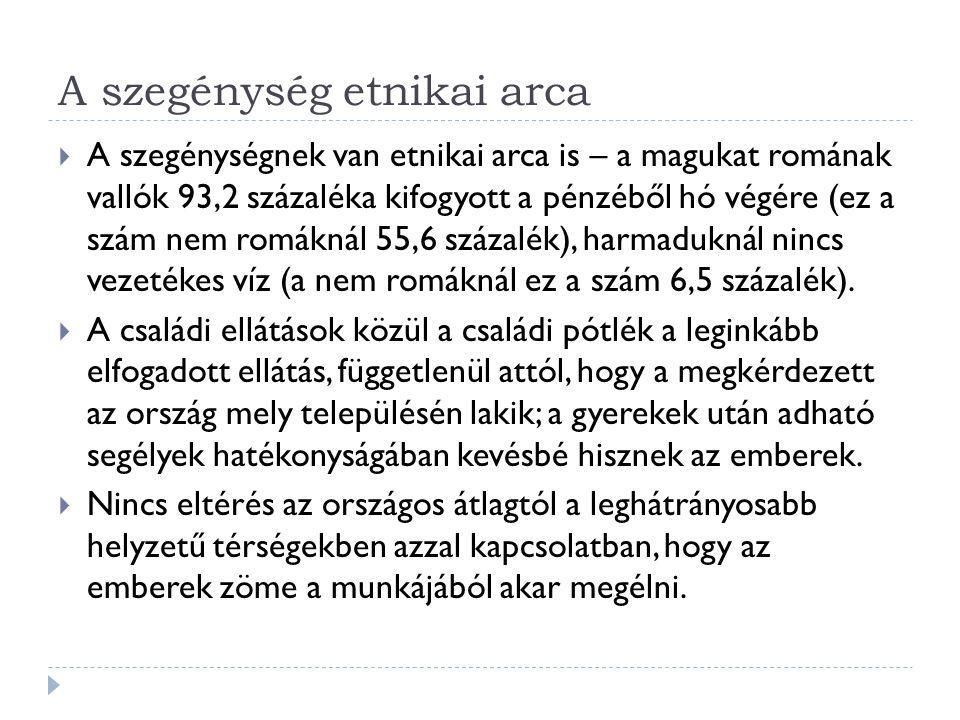A szegénység etnikai arca  A szegénységnek van etnikai arca is – a magukat romának vallók 93,2 százaléka kifogyott a pénzéből hó végére (ez a szám nem romáknál 55,6 százalék), harmaduknál nincs vezetékes víz (a nem romáknál ez a szám 6,5 százalék).