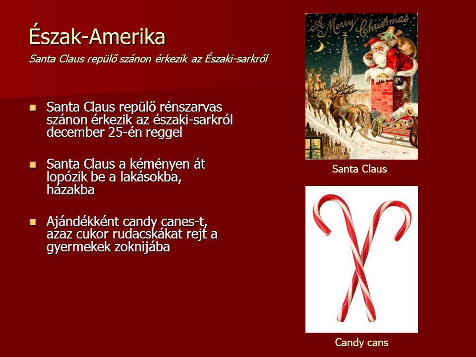 Észak-Amerika Santa Claus repülő szánon érkezik az Északi-sarkról Santa Claus repülő rénszarvas szánon érkezik az északi-sarkról december 25-én reggel