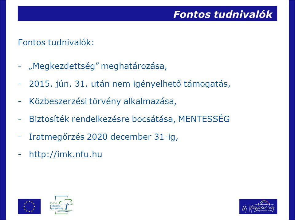 Köszönöm megtisztelő figyelmüket! KvVM Fejlesztési Igazgatóság www.fi.kvvm.hu