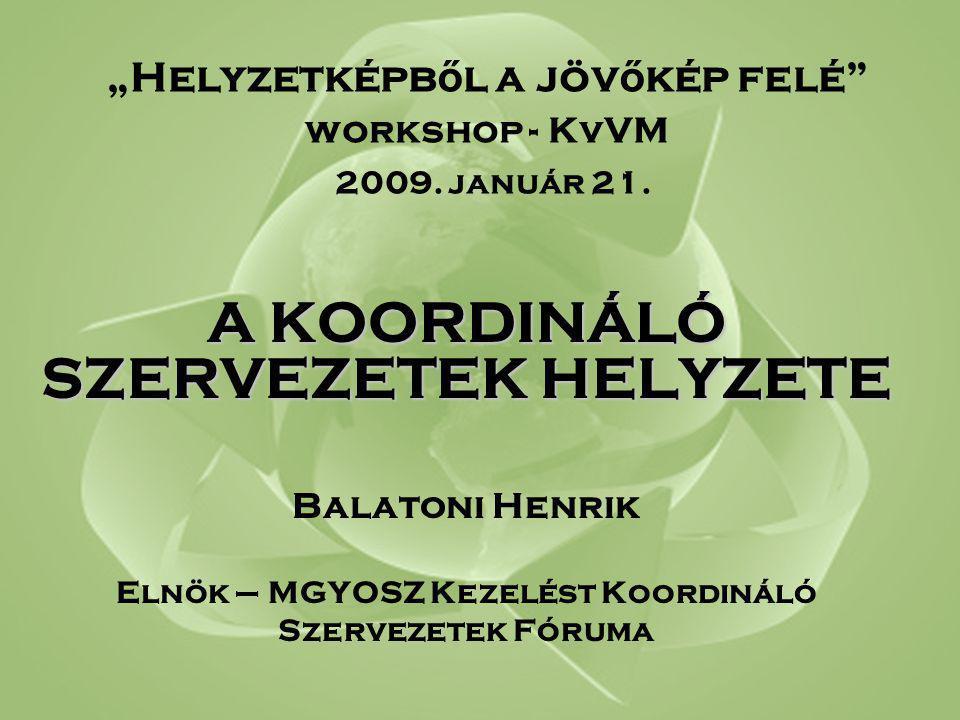 """""""Helyzetképb ő l a jöv ő kép felé workshop - KvVM 2009."""