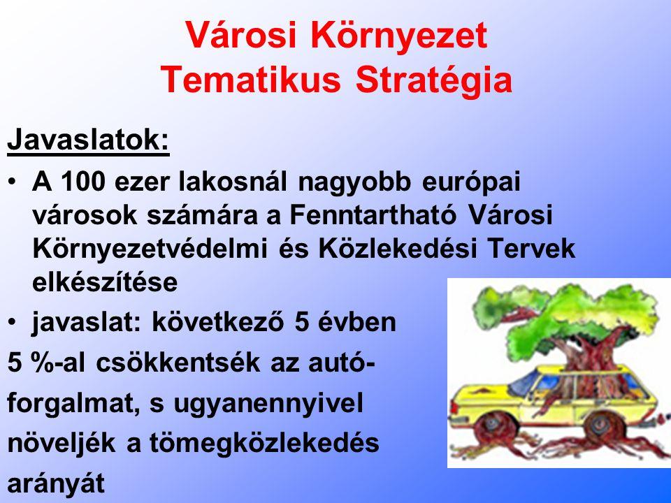 Városi Környezet Tematikus Stratégia Javaslatok: A 100 ezer lakosnál nagyobb európai városok számára a Fenntartható Városi Környezetvédelmi és Közleke