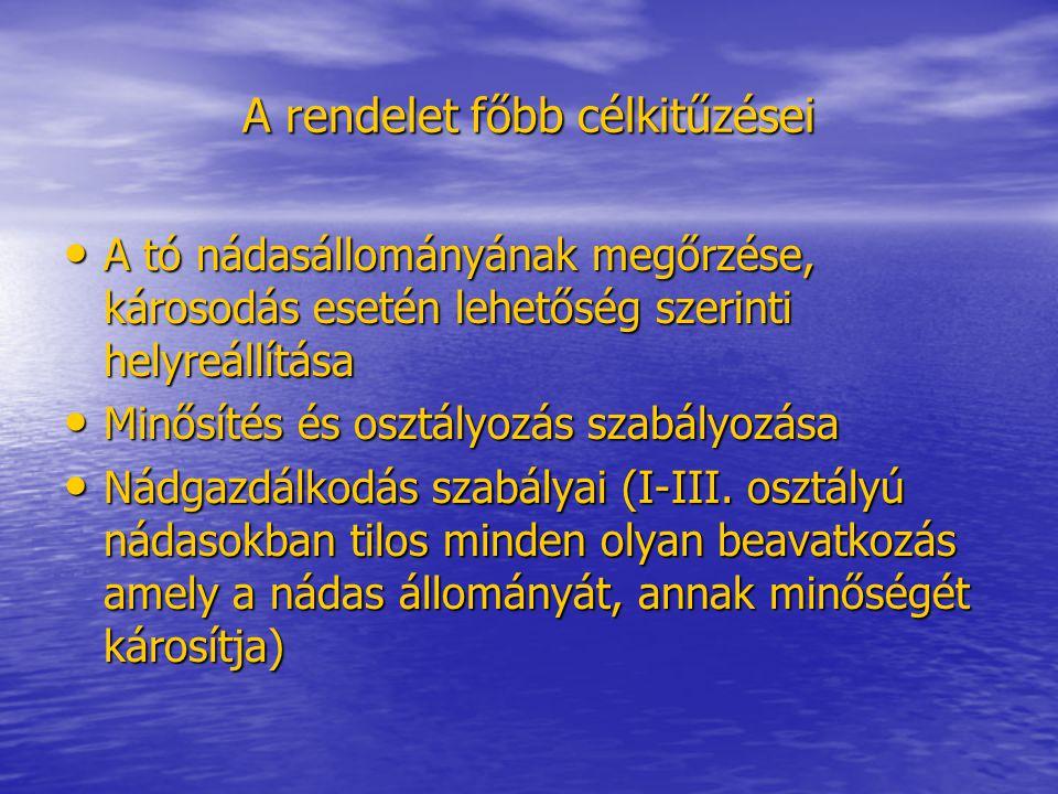 """""""Első minősítés Készítője: a Penta-Grid Kft 1998-99-ben Készítője: a Penta-Grid Kft 1998-99-ben Kihirdető hatósági határozat: 11.400/2/2000 (NyuDu-VIZIG) Kihirdető hatósági határozat: 11.400/2/2000 (NyuDu-VIZIG) A minősítés a természetvédelem és a vízügy közös feladata"""