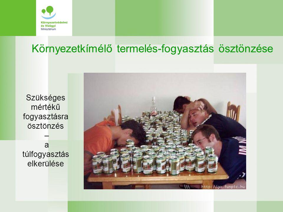 Környezetkímélő termelés-fogyasztás ösztönzése Szükséges mértékű fogyasztásra ösztönzés – a túlfogyasztás elkerülése