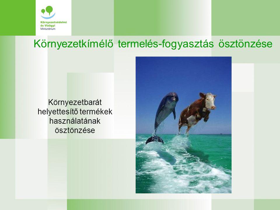 Környezetkímélő termelés-fogyasztás ösztönzése Környezetbarát helyettesítő termékek használatának ösztönzése