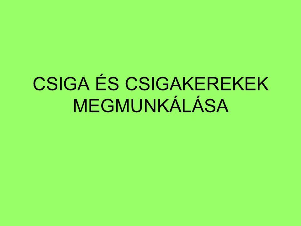 CSIGA ÉS CSIGAKEREKEK MEGMUNKÁLÁSA