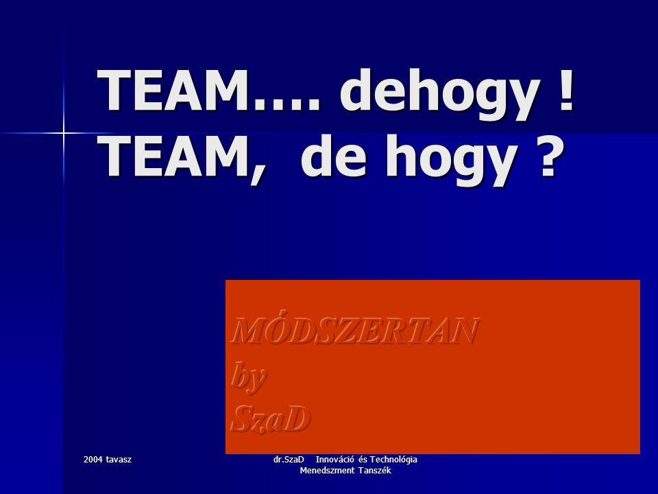 2004 tavasz dr.SzaD Innováció és Technológia Menedszment Tanszék TEAM…. dehogy ! TEAM, de hogy ?