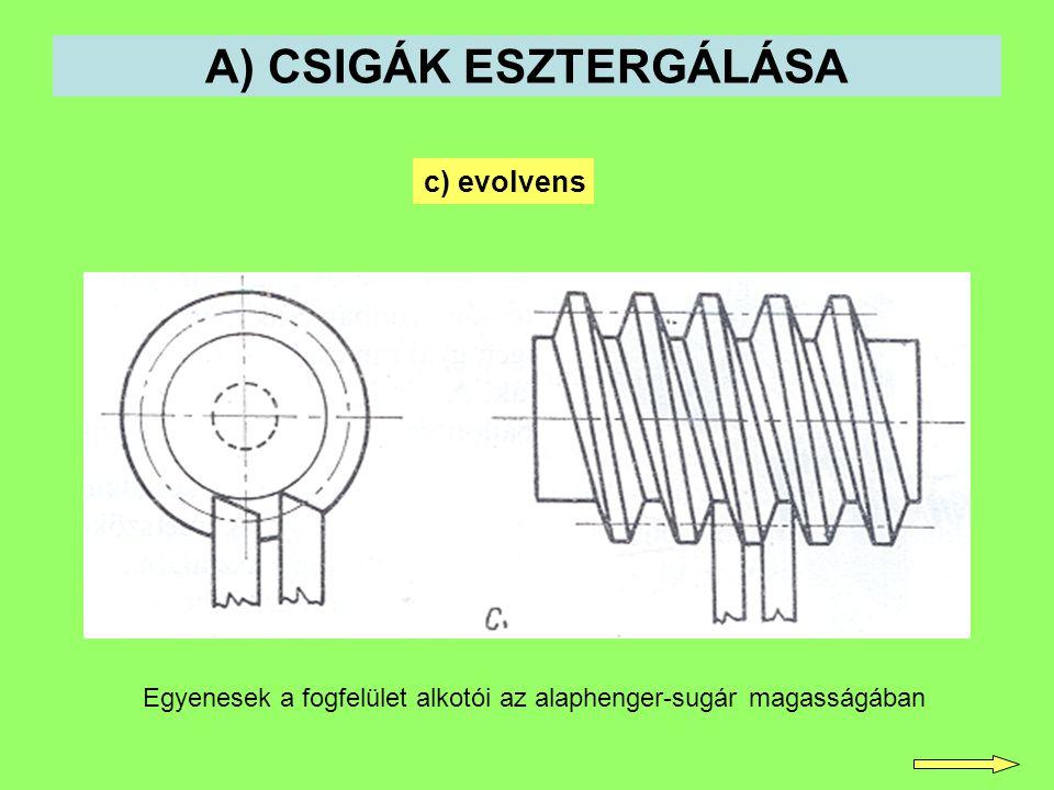 A) CSIGÁK ESZTERGÁLÁSA c) evolvens Egyenesek a fogfelület alkotói az alaphenger-sugár magasságában