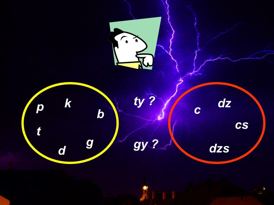 p t k b d g c dz cs dzs gy ? ty ?