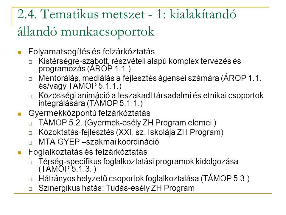 2.4. Tematikus metszet - 1: kialakítandó állandó munkacsoportok Folyamatsegítés és felzárkóztatás  Kistérségre-szabott, részvételi alapú komplex terv