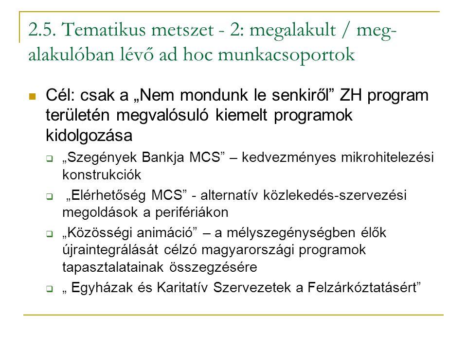 """2.5. Tematikus metszet - 2: megalakult / meg- alakulóban lévő ad hoc munkacsoportok Cél: csak a """"Nem mondunk le senkiről"""" ZH program területén megvaló"""