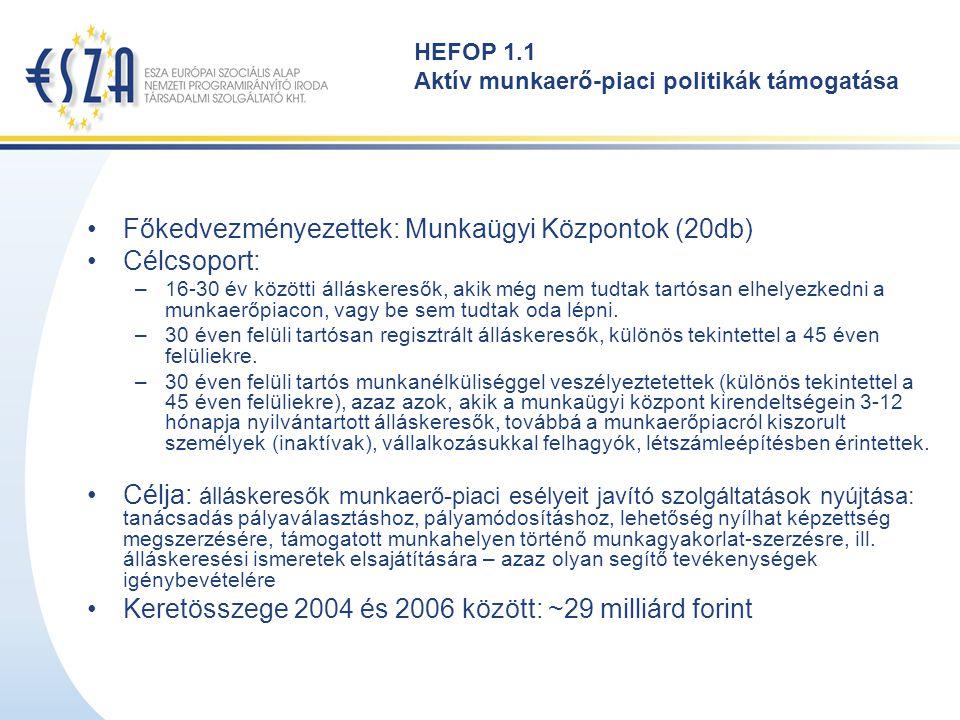 HEFOP 1.1 Aktív munkaerő-piaci politikák támogatása Főkedvezményezettek: Munkaügyi Központok (20db) Célcsoport: –16-30 év közötti álláskeresők, akik m