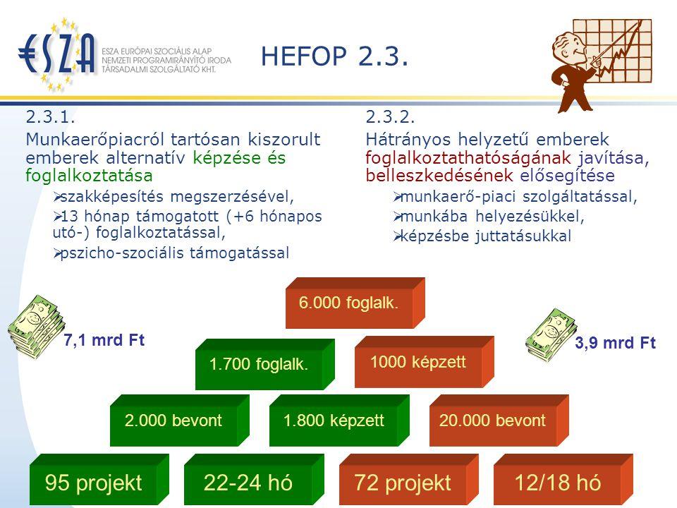 HEFOP 3.2.2 és 4.1.1 Térségi Integrált Szakképző Központok (TISZK) létrehozása és infrastrukturális feltételeinek javítása Célja: A szakképzés hatékonyságának növelése a szakképzési kínálat megfelelő koordinációjának biztosításával, valamint a mai igényeknek megfelelő csúcstechnológia összehangolt alkalmazása; Keretösszege 17 mrd Ft ( 5,5 mrd ESZA – 11,5 mrd ERFA) Célcsoport: szakképzésben érintett tanulók, kb.