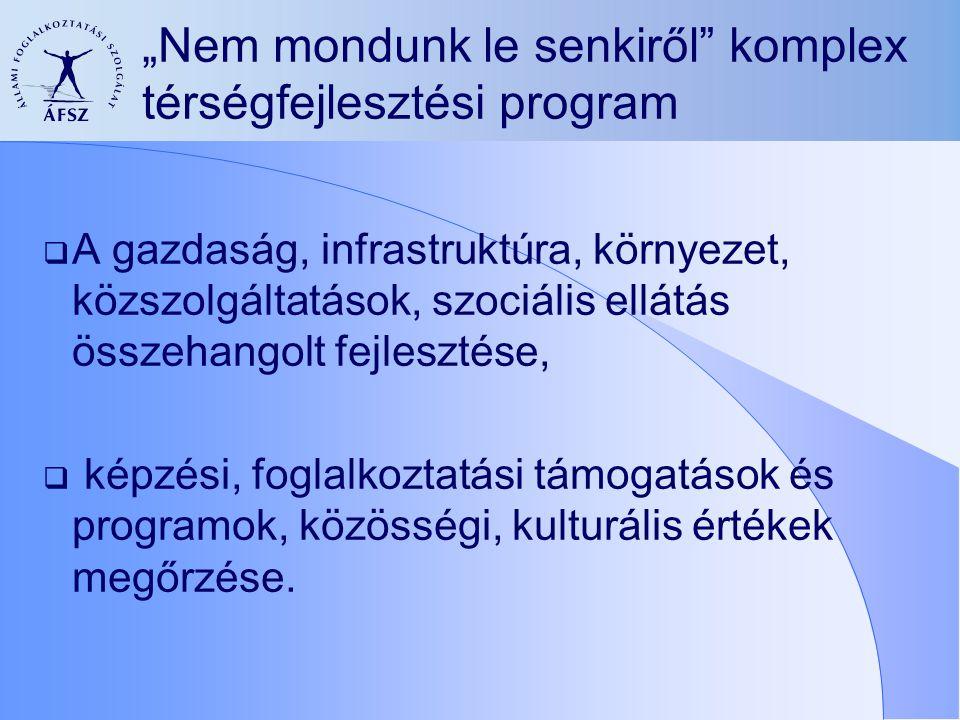 A program célja Összehangolt műveletek megvalósítása a többszörös hátrány felszámolása érdekében:  a helyi társadalom szükségleteire alapozva,  a gazdaság, a foglalkoztatás, a környezeti és közlekedési viszonyok, a közszolgáltatások területén.
