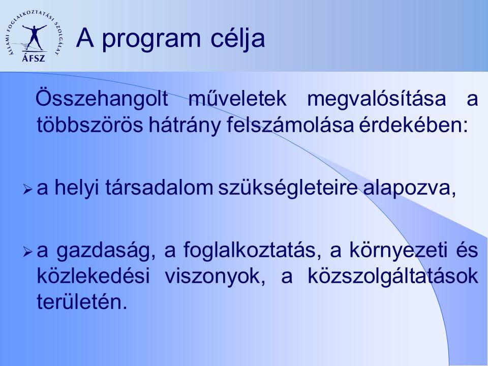 A program célja Összehangolt műveletek megvalósítása a többszörös hátrány felszámolása érdekében:  a helyi társadalom szükségleteire alapozva,  a ga