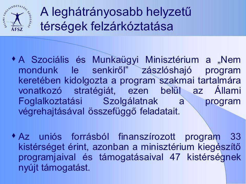 Egyéb lehetőségek a foglalkoztathatóság javítására  a leghátrányosabb kistérségben élő álláskeresők bevonása az európai uniós forrásból támogatott programokba,  Mobilitás támogatása - elmarad az indokolt mértéktől  munkahelymegőrzés támogatása,  A vállalkozások bátorítása sokoldalúan - elmarad a kívánatos szinttől  komplex munkaerő-piaci programok szervezése a régióban  munkaerő-piaci szolgáltatások nyújtása.