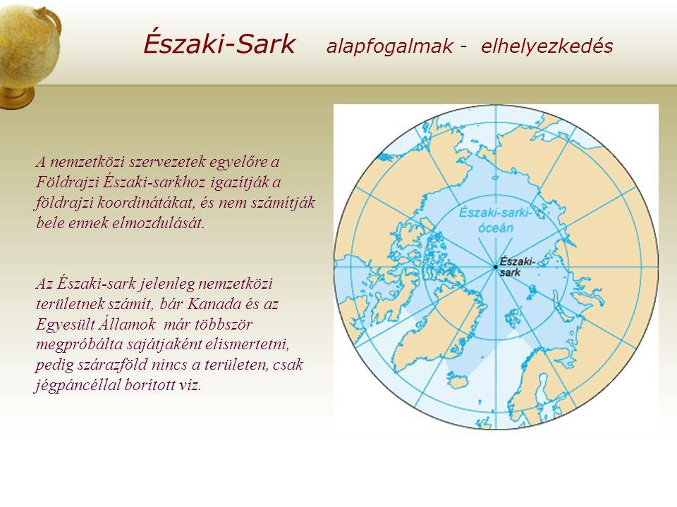 A nemzetközi szervezetek egyelőre a Földrajzi Északi-sarkhoz igazítják a földrajzi koordinátákat, és nem számítják bele ennek elmozdulását.