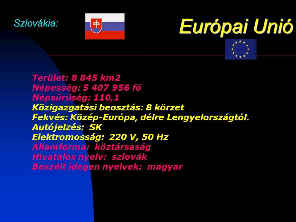 Európai Unió Szlovákia: Gasztronómia: A szlovák konyha a Közép-Európa többi országában is megtalálható alapanyagokat használja: húst, burgonyát, rizst, zöldségeket.