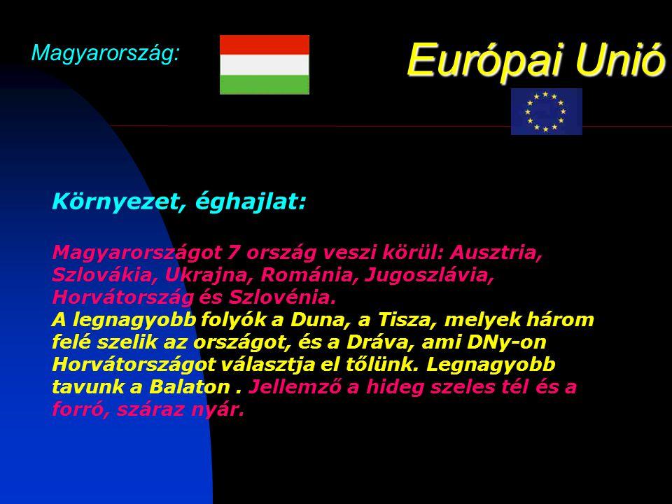 Európai Unió Magyarország: Környezet, éghajlat: Magyarországot 7 ország veszi körül: Ausztria, Szlovákia, Ukrajna, Románia, Jugoszlávia, Horvátország és Szlovénia.