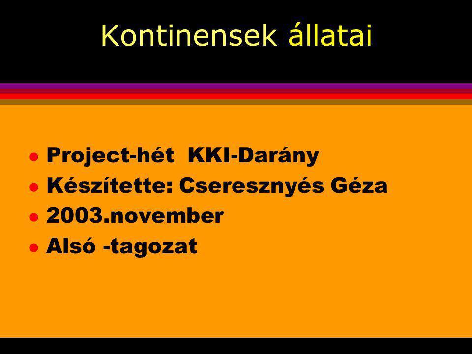 Kontinensek állatai l Project-hét KKI-Darány l Készítette: Cseresznyés Géza l 2003.november l Alsó -tagozat