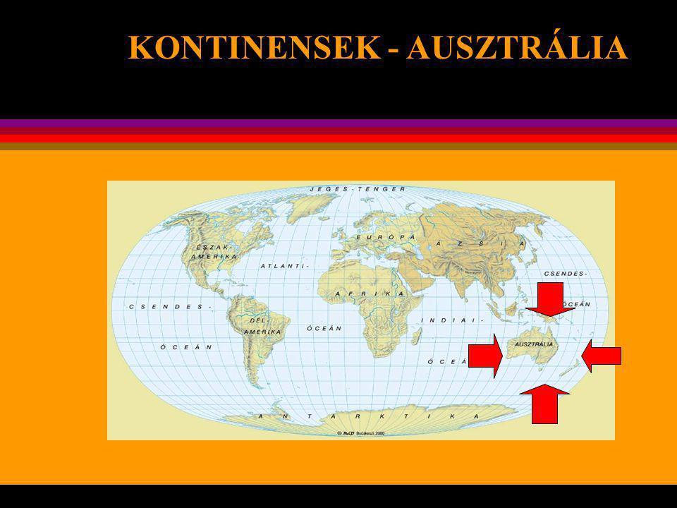 Az Antarktiszon él rendkívül sajátos része bolygónknak – földrajzi, természeti és egyéb szempontból egyaránt. Szinte nincs is olyan jellemvonása, amel