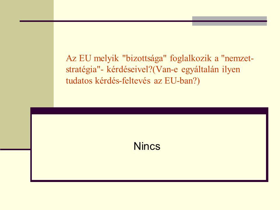 Az EU melyik bizottsága foglalkozik a nemzet- stratégia - kérdéseivel?(Van-e egyáltalán ilyen tudatos kérdés-feltevés az EU-ban?) Nincs