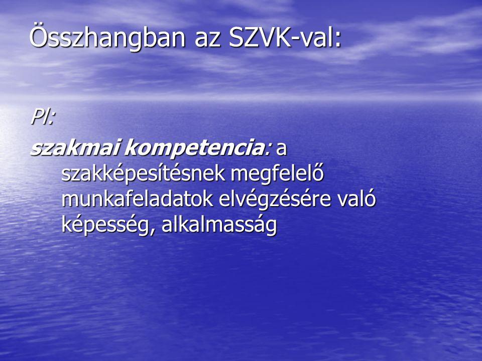 Összhangban az SZVK-val: Pl: szakmai kompetencia: a szakképesítésnek megfelelő munkafeladatok elvégzésére való képesség, alkalmasság