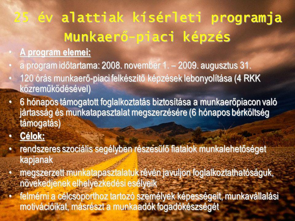 25 év alattiak kísérleti programja Munkaerő-piaci képzés A program elemei: A program elemei: a program időtartama: 2008. november 1. – 2009. augusztus
