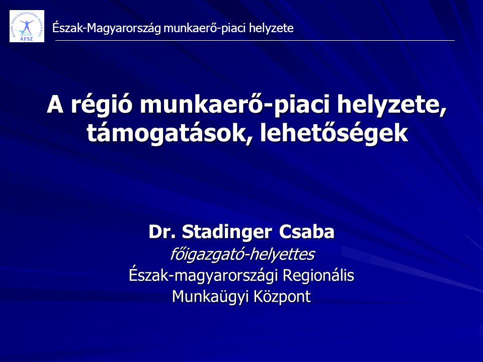 Észak-Magyarország munkaerő-piaci helyzete Dr. Stadinger Csaba főigazgató-helyettes Észak-magyarországi Regionális Munkaügyi Központ A régió munkaerő-