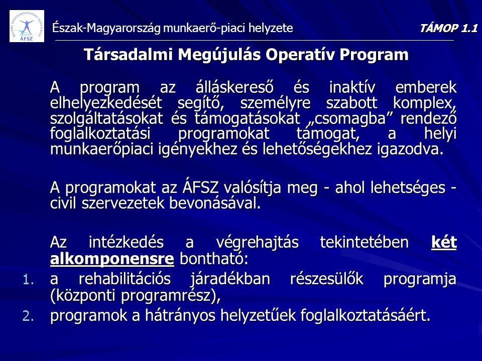 Észak-Magyarország munkaerő-piaci helyzete Társadalmi Megújulás Operatív Program A program az álláskereső és inaktív emberek elhelyezkedését segítő, s