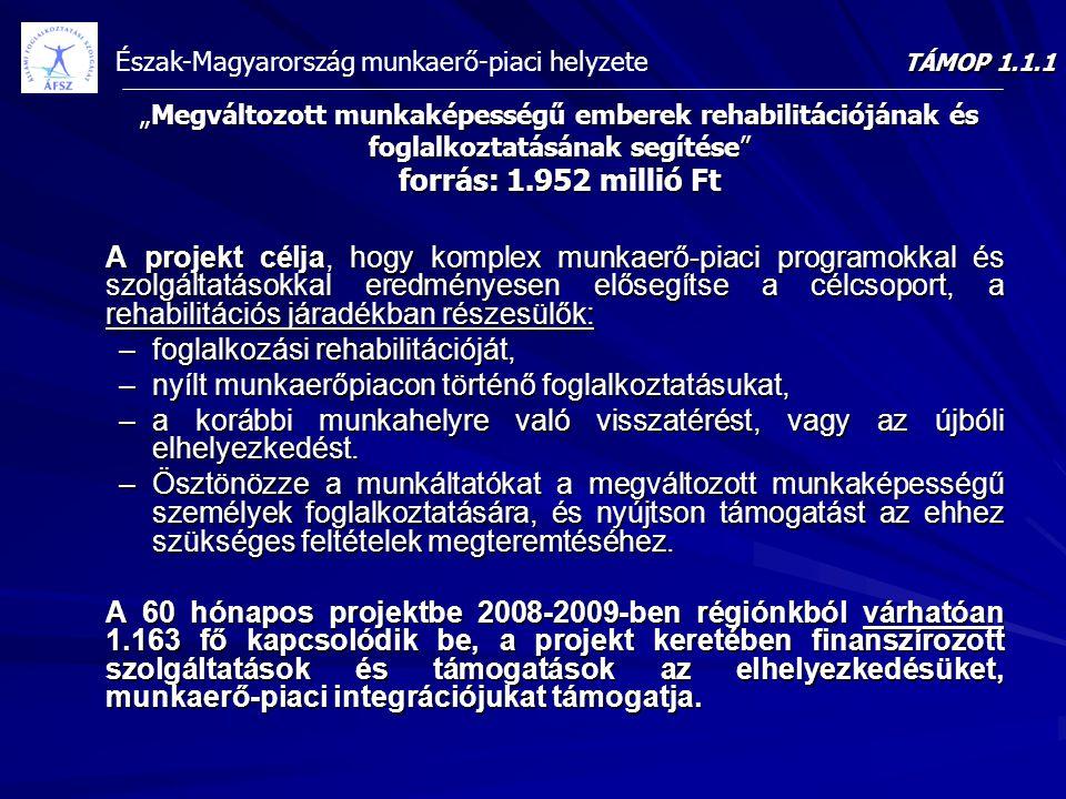 """Észak-Magyarország munkaerő-piaci helyzete """"Megváltozott munkaképességű emberek rehabilitációjának és foglalkoztatásának segítése"""" forrás: 1.952 milli"""