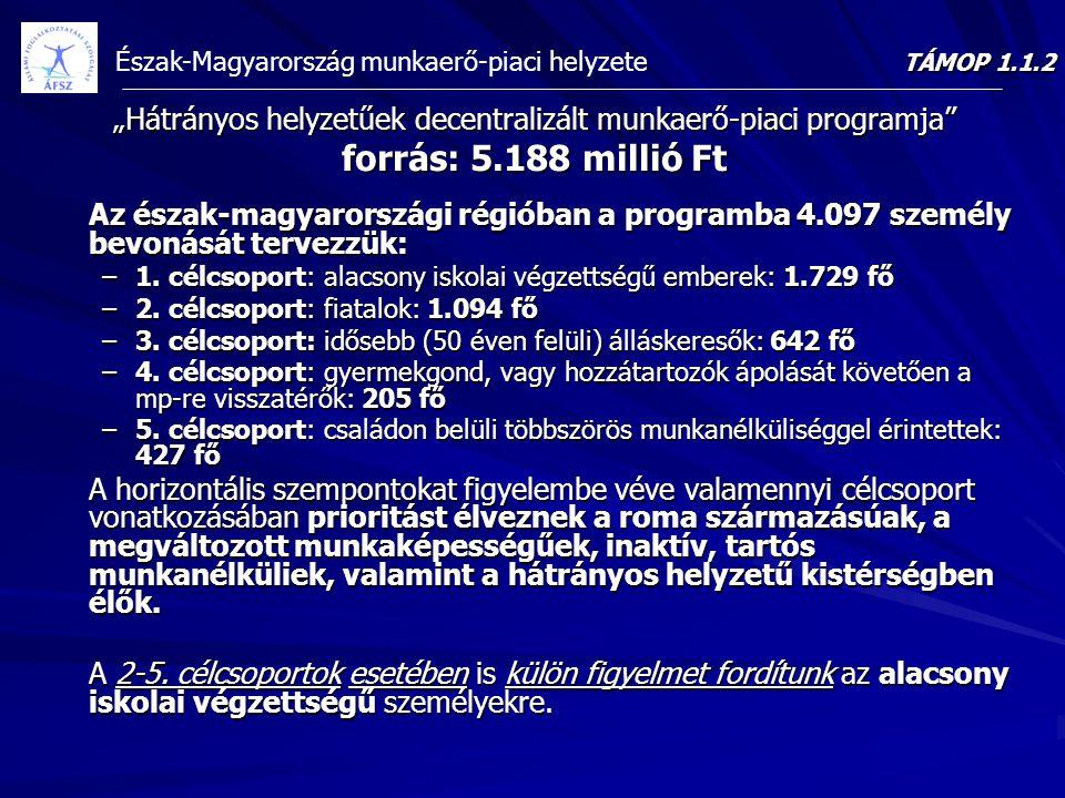 """Észak-Magyarország munkaerő-piaci helyzete """"Hátrányos helyzetűek decentralizált munkaerő-piaci programja"""" forrás: 5.188 millió Ft Az észak-magyarorszá"""