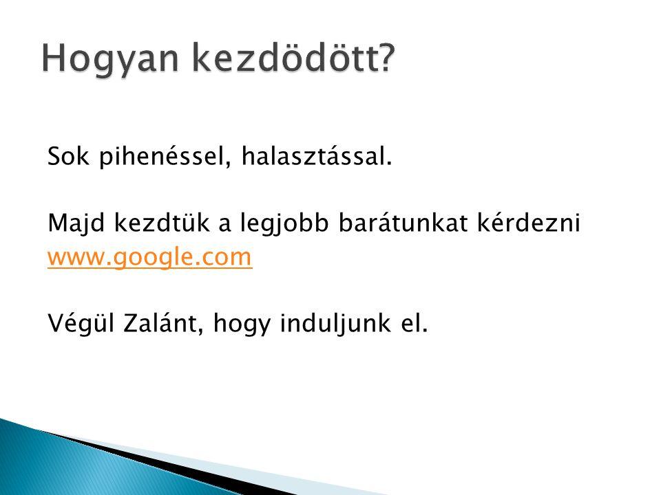  Ha a telepités sikeres volt megjelenik a Calendar (Ctrl+C) menü  Menü rendszer: ◦ Calendar  MainWindow  Import/Export  Import  Export  Help