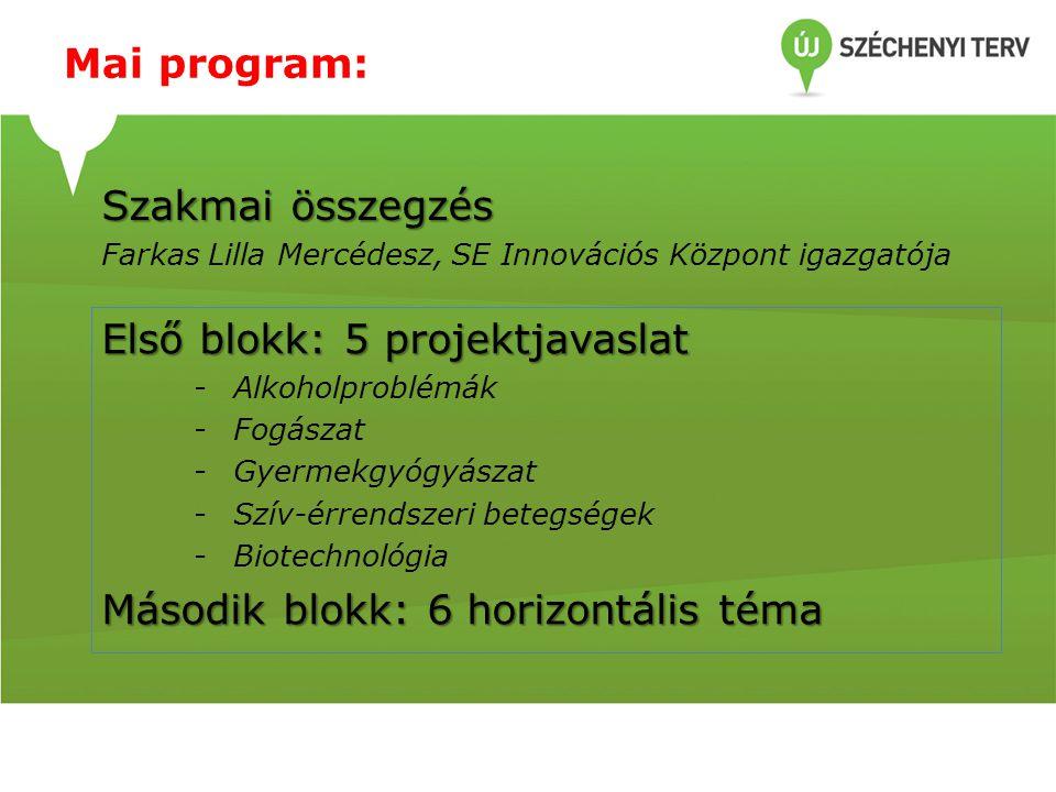 Első blokk projekt javaslatai 1.Alkoholproblémával küzdők segítése Nógrád megyében - Dr.