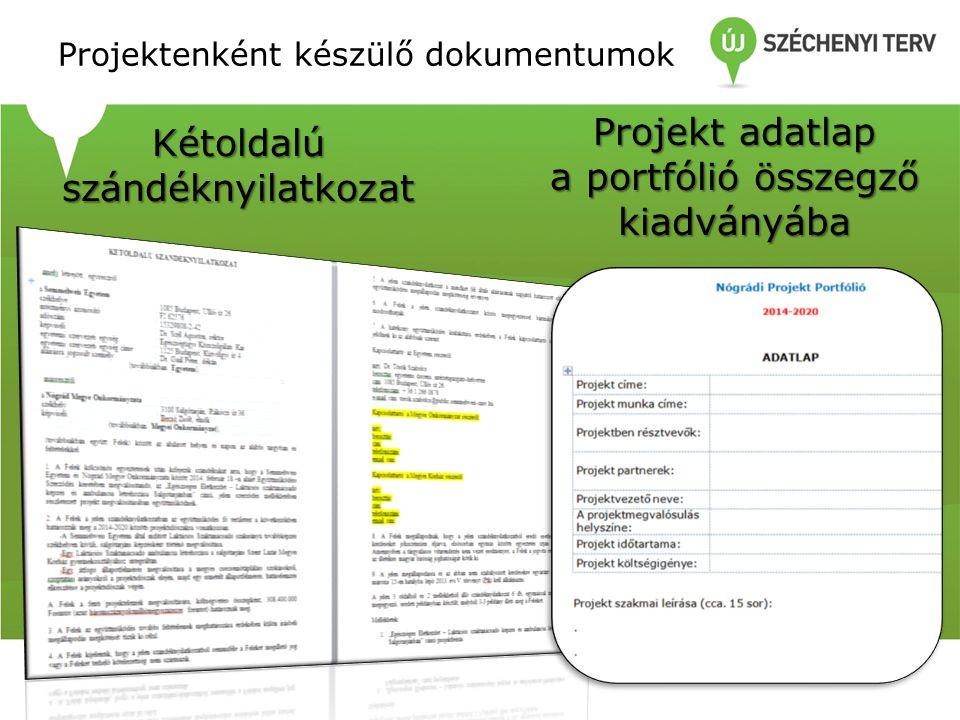 Projektenként készülő dokumentumok Kétoldalú szándéknyilatkozat Projekt adatlap a portfólió összegző kiadványába