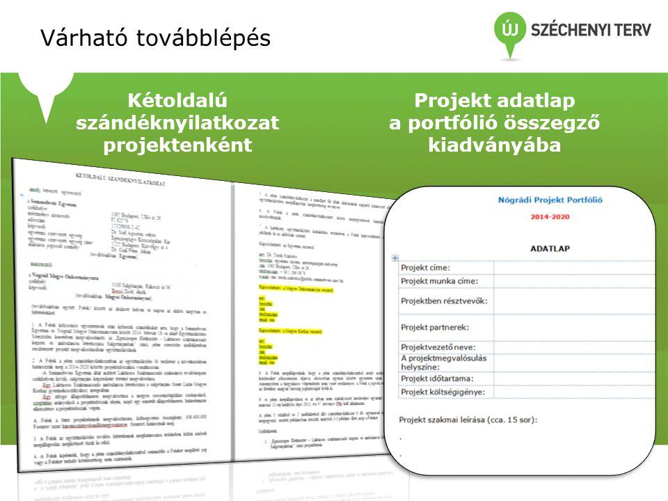 Várható továbblépés Kétoldalú szándéknyilatkozat projektenként Projekt adatlap a portfólió összegző kiadványába