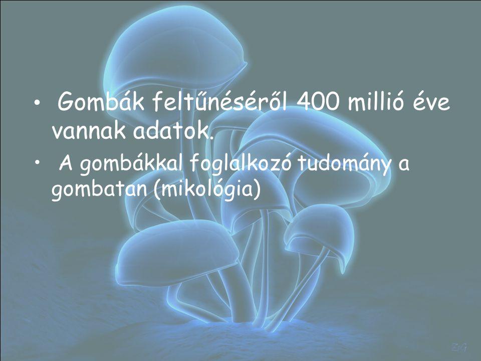 Gombák feltűnéséről 400 millió éve vannak adatok. A gombákkal foglalkozó tudomány a gombatan (mikológia)