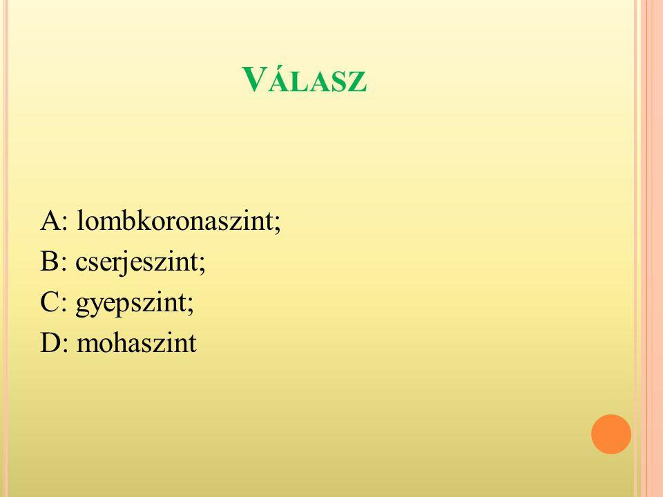 V ÁLASZ A: lombkoronaszint; B: cserjeszint; C: gyepszint; D: mohaszint