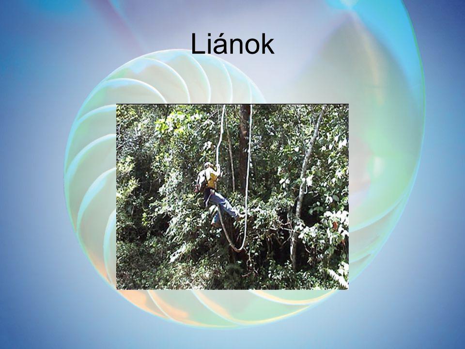 Liánok
