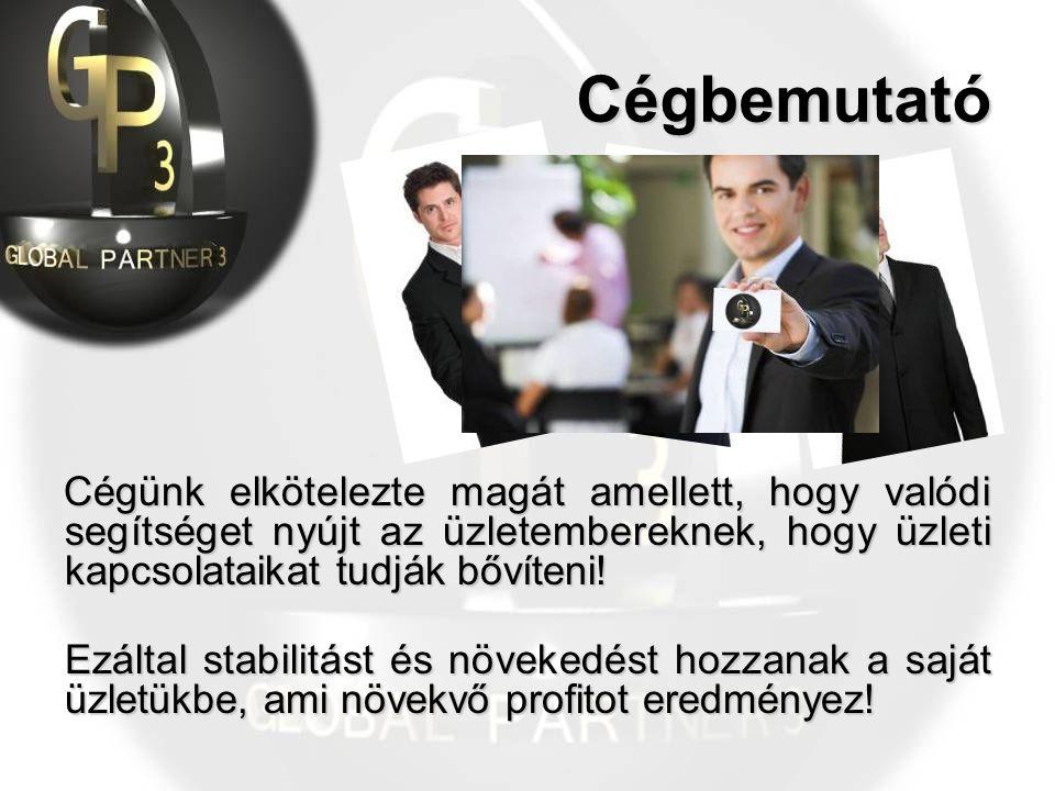 Cégünk elkötelezte magát amellett, hogy valódi segítséget nyújt az üzletembereknek, hogy üzleti kapcsolataikat tudják bővíteni.
